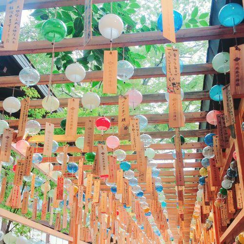 夏の終わりに想いをのせて。埼玉県川越市《氷川神社》の縁結び風鈴のサムネイル画像