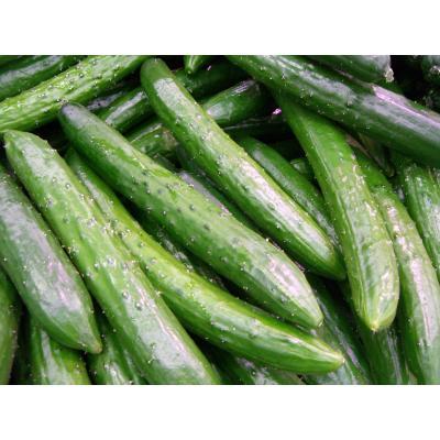 きゅうり大好きさんのために♡きゅうりを使ったサラダレシピをご紹介のサムネイル画像