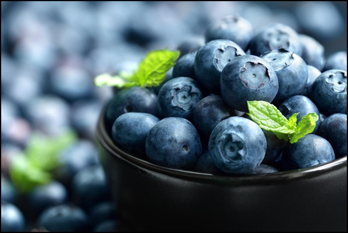ブルーベリーを朝食に!海外で人気のおすすめレシピ【3選】のサムネイル画像