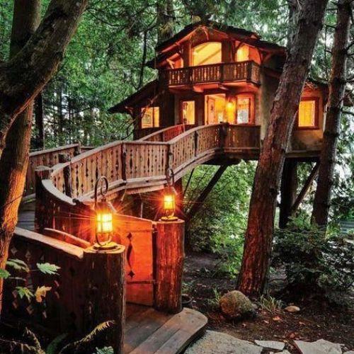 【ドキドキする宿泊体験、してみない?】ロマンチックな古民家&ツリーハウス《関東》のサムネイル画像