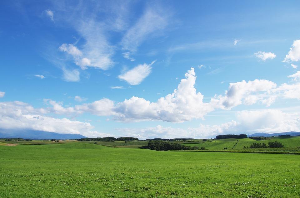 【新婚旅行♡】北海道のおすすめ観光&バケーションスポットのサムネイル画像