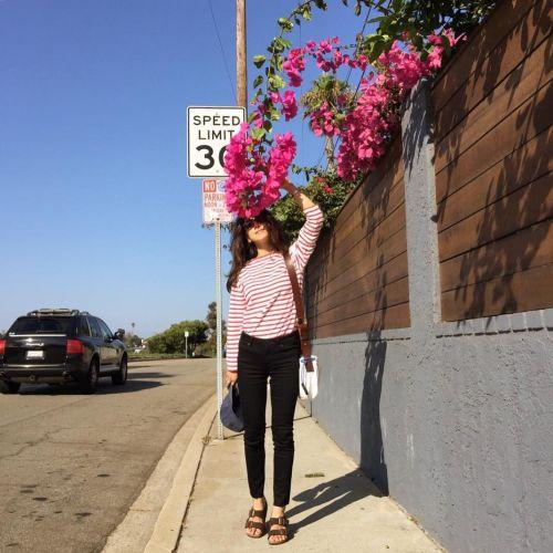 話題の◯◯流トレーニング!鍛えてかっこいい女性になっちゃおう♡のサムネイル画像