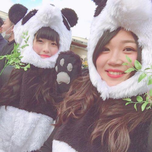 お腹も心も満たされよう♡上野の《パンダスイーツ》が可愛すぎる♡のサムネイル画像