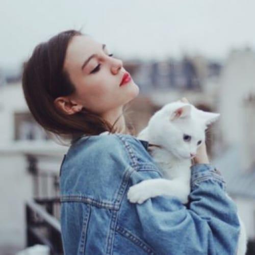 猫の住む森へご招待♡吉祥寺の猫カフェ【てまりのおうち】が素敵すぎのサムネイル画像