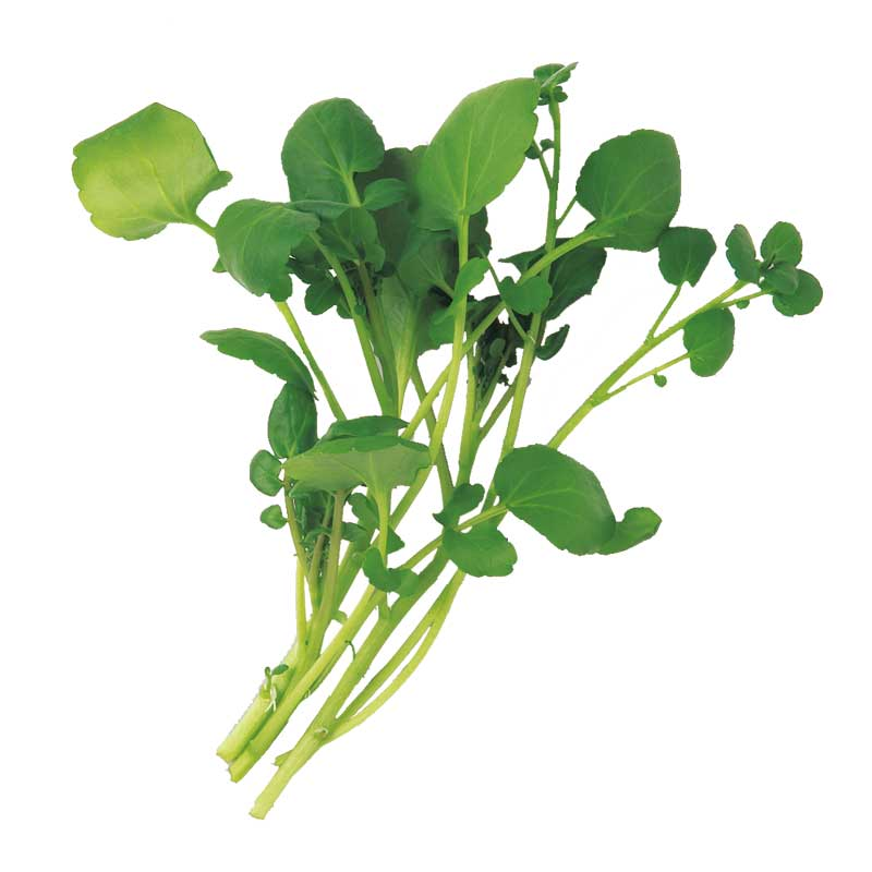 クレソンが万能野菜だって知ってた!?食べるなら絶対このレシピ!!のサムネイル画像