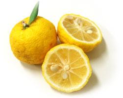 【丸ごと使える】爽やかな香りと酸味を楽しむ!ゆずレシピ♪のサムネイル画像