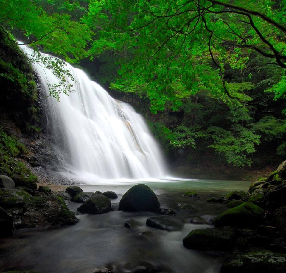都内からドライブ圏内!自然豊かな栃木のデートスポットご紹介!のサムネイル画像
